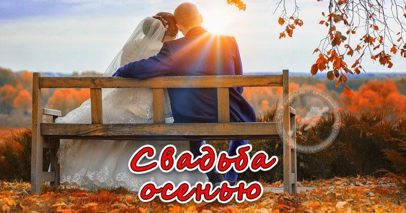 Свадьба в осенний период